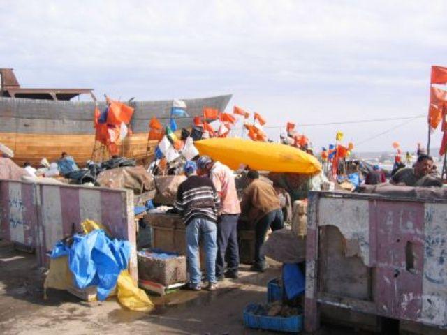 La pêche ,le poisson,les marins et l'activité au port - Page 2 11557914