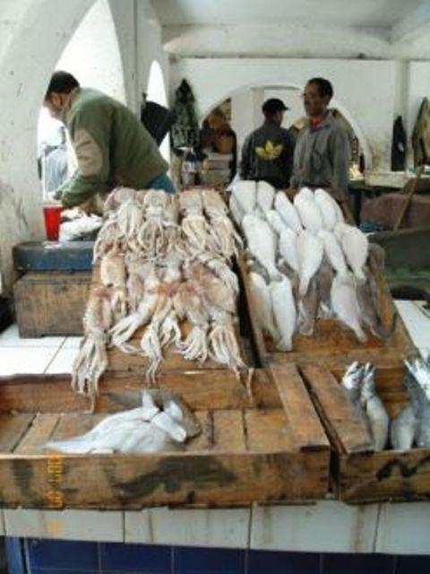 La pêche ,le poisson,les marins et l'activité au port 11566210