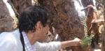 portraits des membres Essaouira-scala 3-86110
