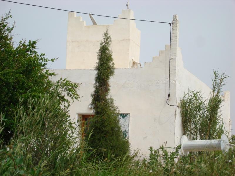 La maison d'Afoulouste ou ADDAR LAKBIRA Dsc05224