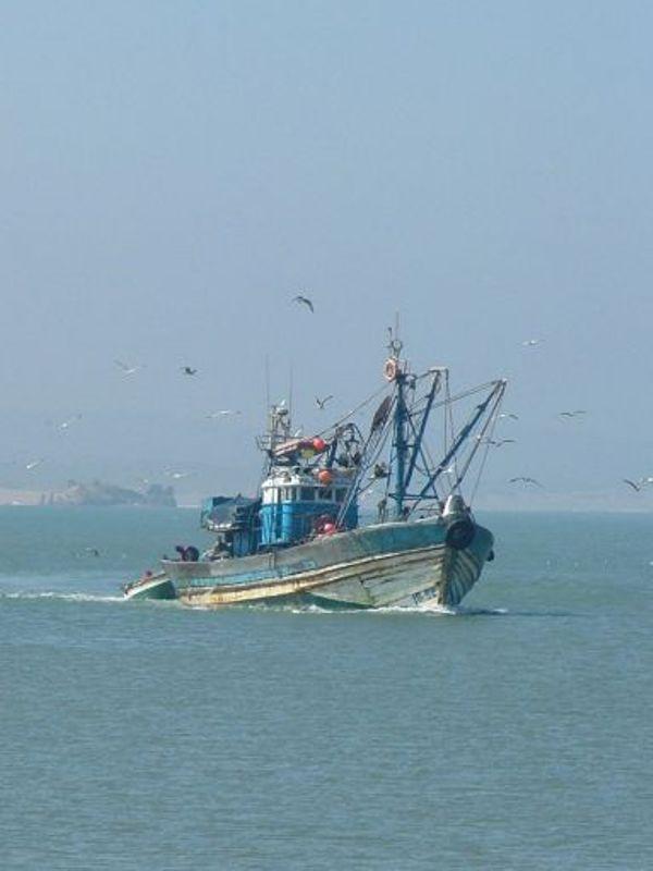 La pêche ,le poisson,les marins et l'activité au port - Page 2 Thumb_10