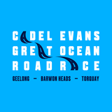 CADEL EVANS GREAT OCEAN ROAD RACE --AUS-- 31.01.2016 10603610