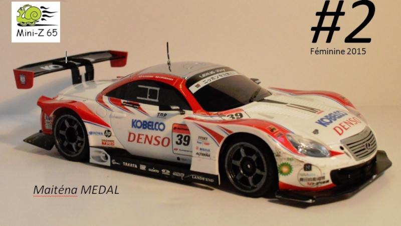 1er Grand Prix Mini-Z 65  2_fem10