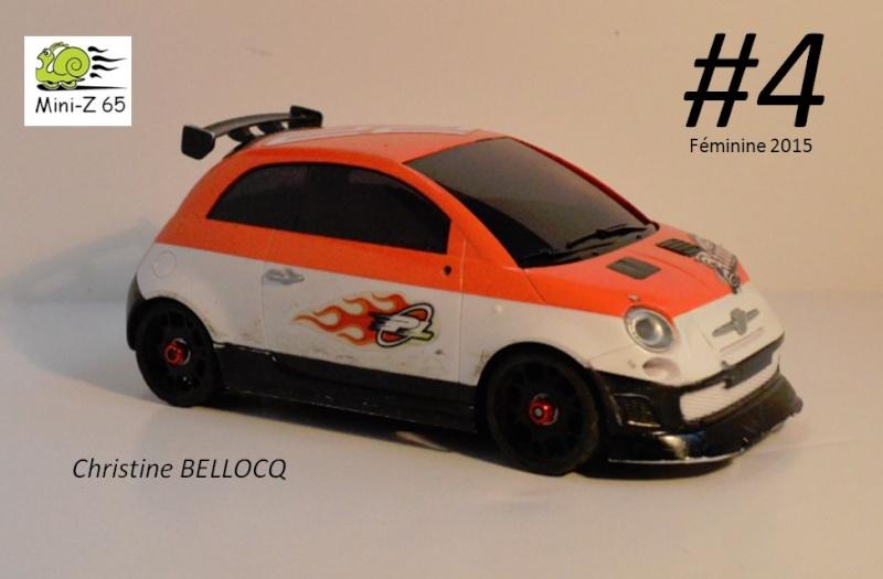 1er Grand Prix Mini-Z 65  4_fem10