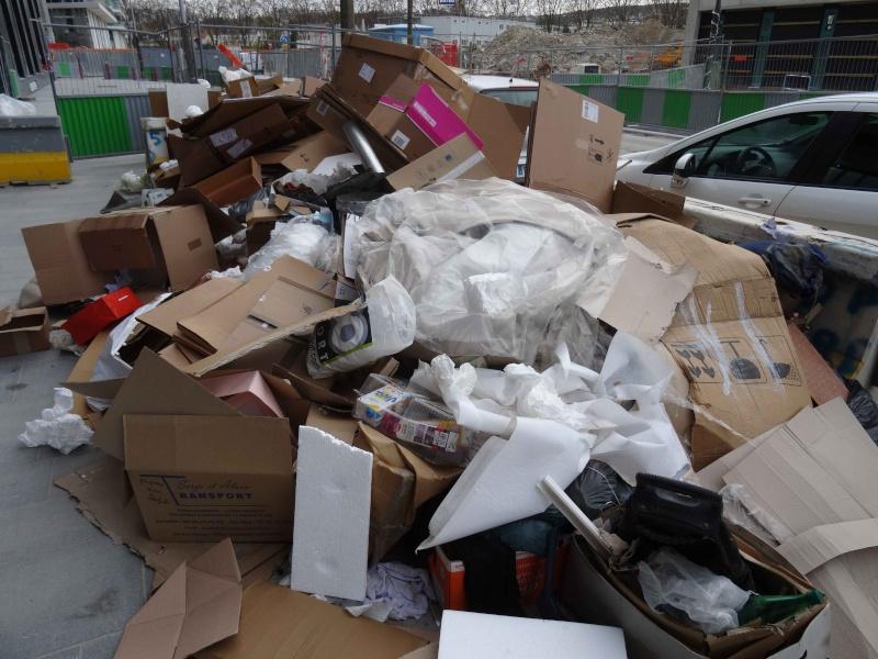 Encombrants, poubelles et caddies - Page 4 Dsc03031