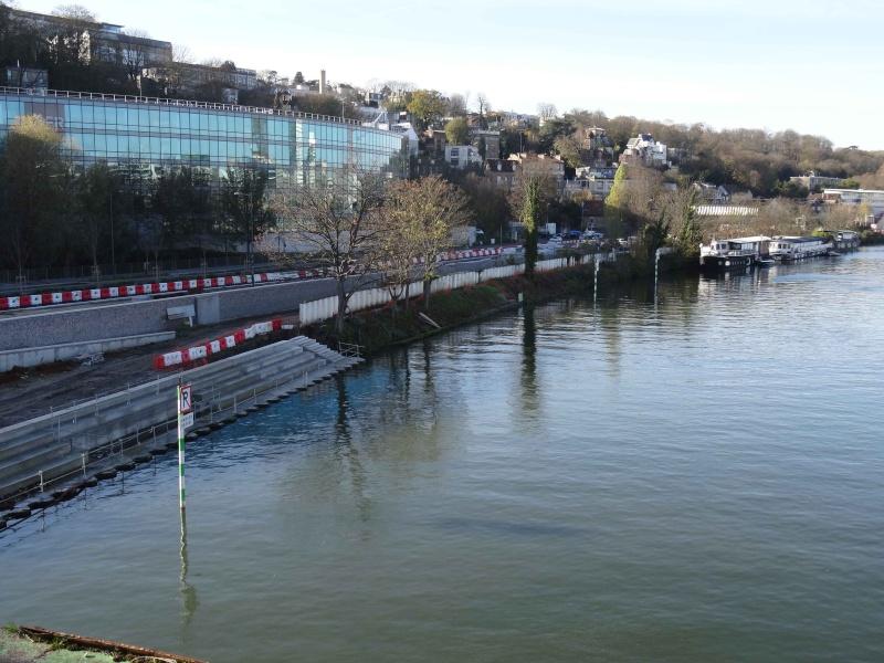 Péniches le long de la Seine Dsc03512
