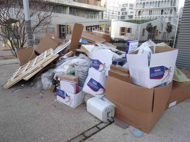 Encombrants, poubelles et caddies - Page 3 Dsc04026