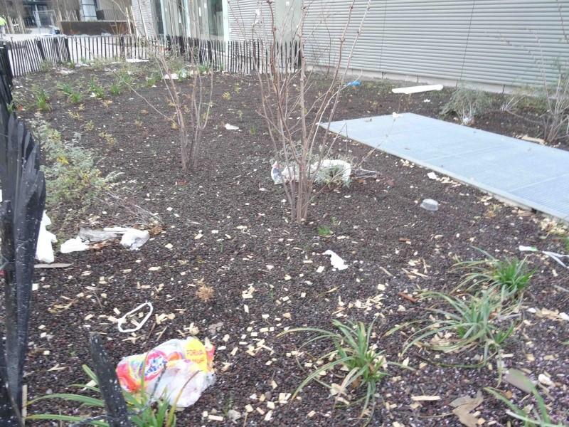 Encombrants, poubelles et caddies - Page 3 Dsc04028
