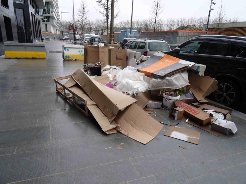 Encombrants, déchets, poubelles et caddies - Page 3 Dsc04720