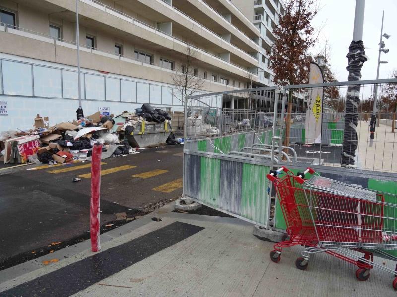 Encombrants, déchets, poubelles et caddies - Page 3 Dsc04721