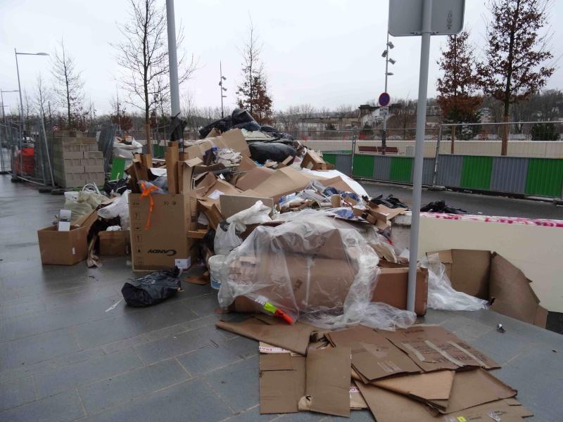 Encombrants, déchets, poubelles et caddies - Page 3 Dsc04722