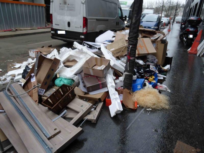 Encombrants, déchets, poubelles et caddies - Page 3 Dsc04724