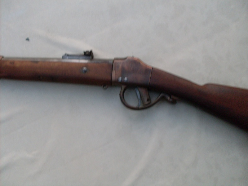 Carabine de tir Sdc10410
