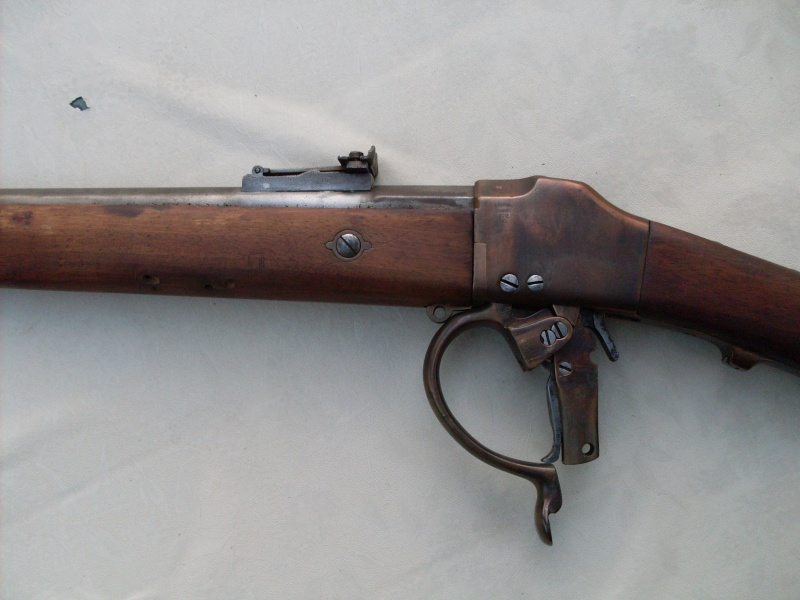 Carabine de tir Sdc10412
