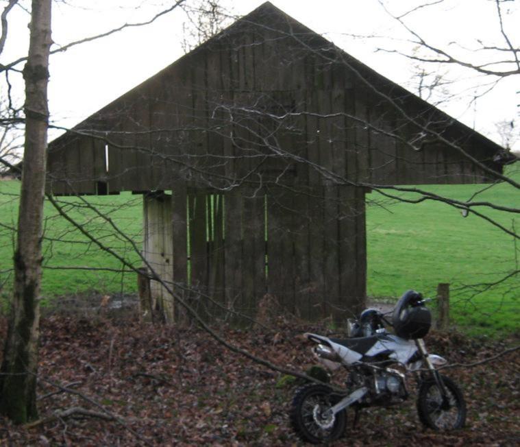 Forêt communale de Flers 29_03_10