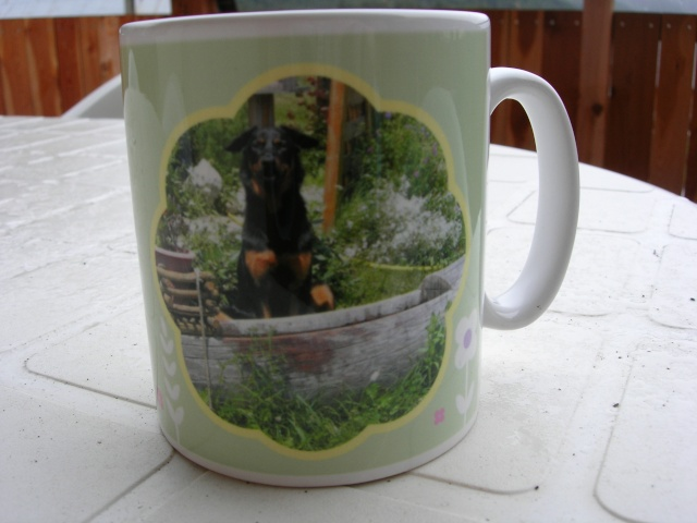 Des mugs personnalisables pour soutenir CDLB!!! Dscn0513