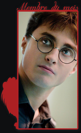 Voir un profil - Harry Potter Harrym11