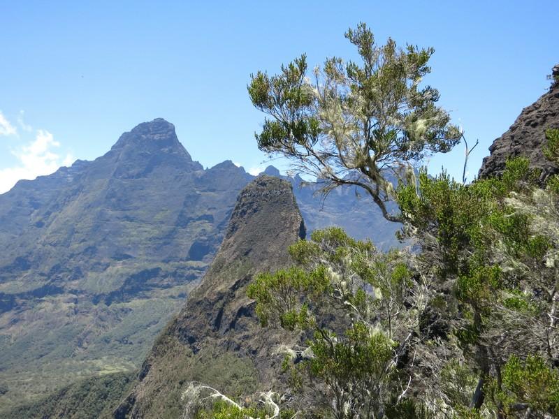 La Réunion automne 2015 11_cil10