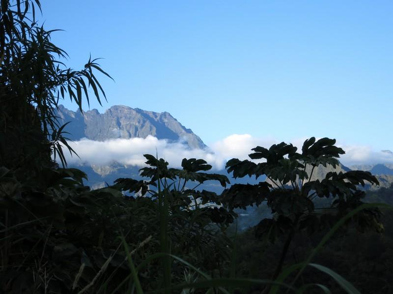 La Réunion automne 2015 12_sal10