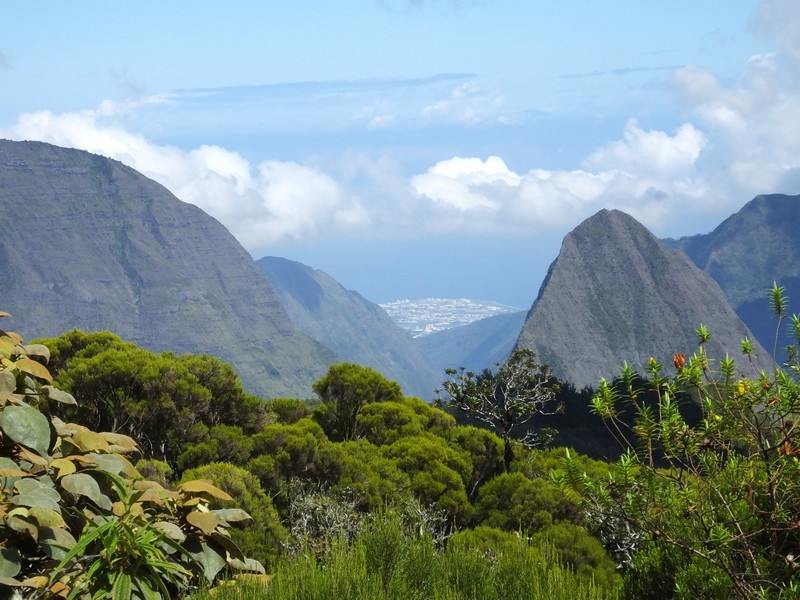 La Réunion automne 2015 14_cir10
