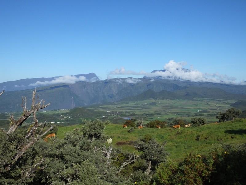 La Réunion automne 2015 15_mon10
