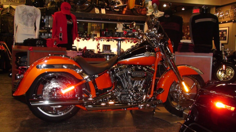 CVO Softail Convertible......... - Page 5 Dsc00910