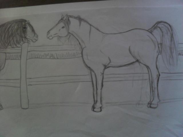 mes deux autres pasions : le dessin et prendre des photos =) Sam_3610