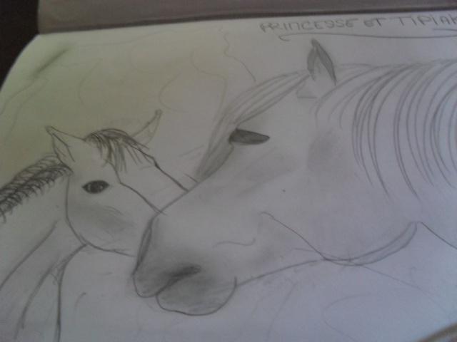 mes deux autres pasions : le dessin et prendre des photos =) Sam_3613