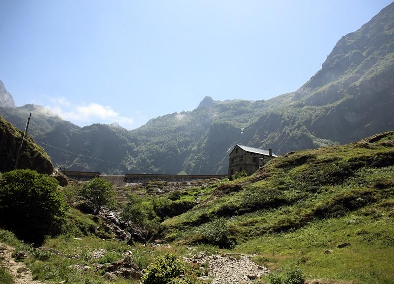Pyrénées et pinguicula sauvages Dpp_5011
