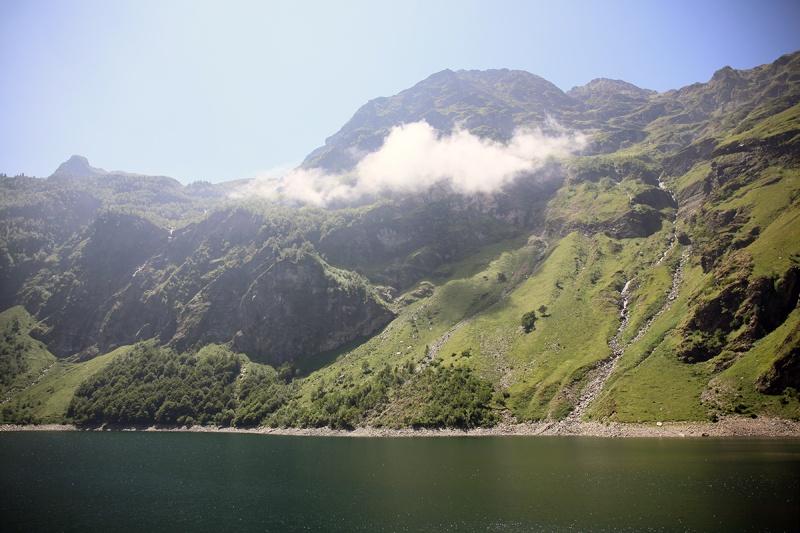 Pyrénées et pinguicula sauvages Dpp_5012