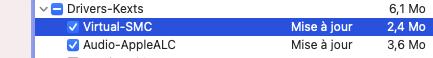 mise à  jour Big Sur 11.3 ( 20E232 ) Captur50