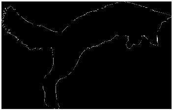 La tanière du renard 7096-r10