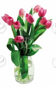 Le langage des fleurs . - Page 2 Waterm10
