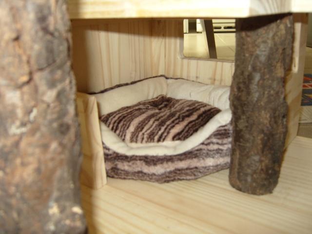 Aménagement intérieur pour vivarium pour mes spermo d'amour S1033335