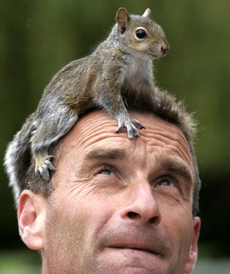 Photos humouristiques de nos amis les animaux... - Page 3 Squirr20