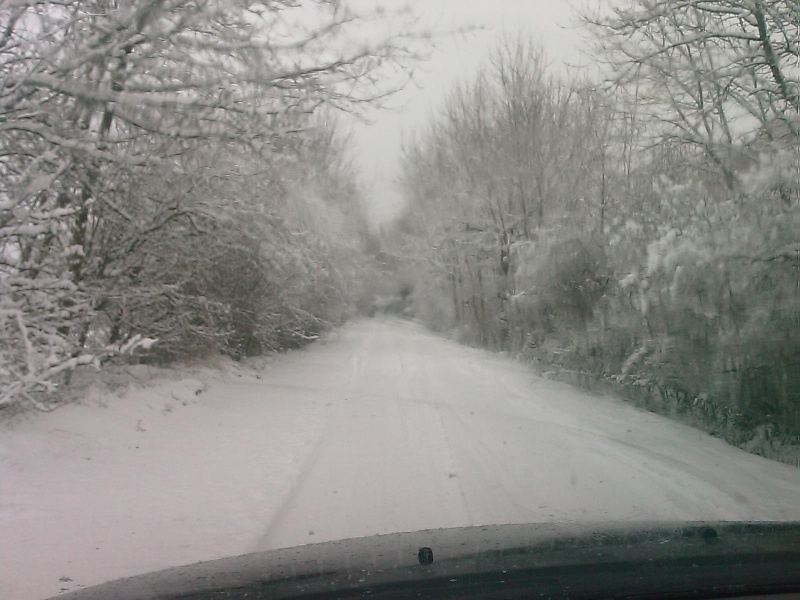 sous la neige Image_10