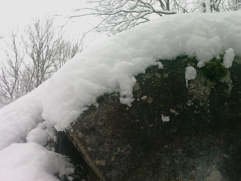 sous la neige Image_11