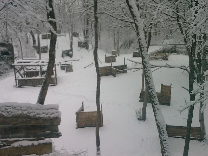 sous la neige Image_13
