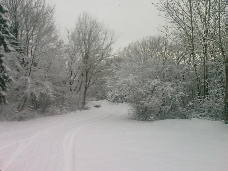 sous la neige Image_14
