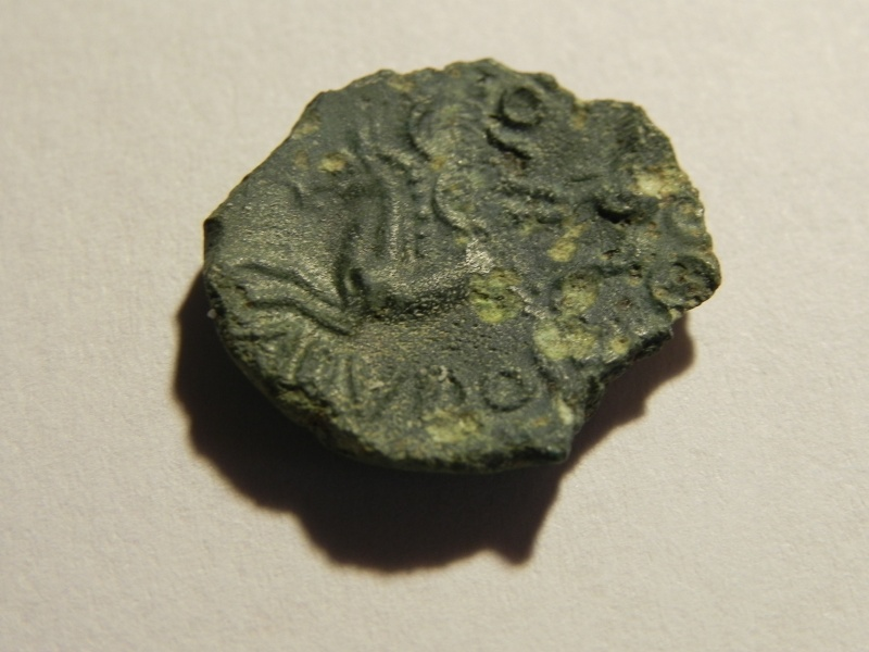 Bronze ABVDOS Dscn3313