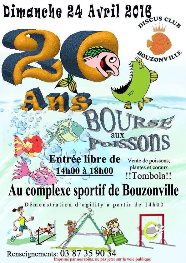 Bourse à Bouzonville - 24 avril 2016 Bou10