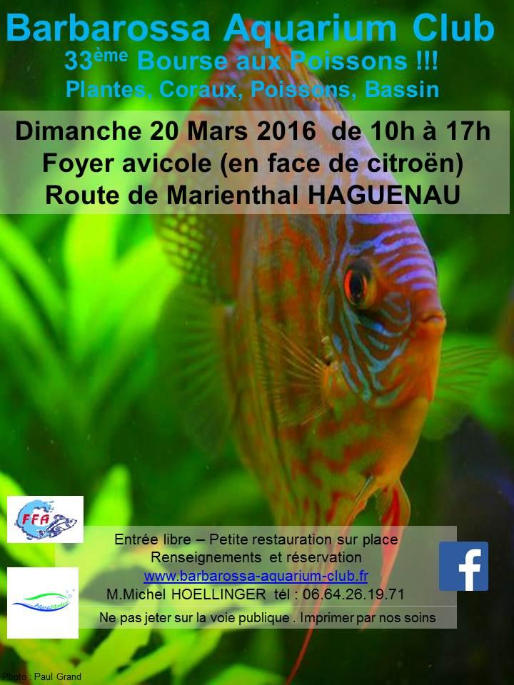 Bourse à HAGUENAU - 20 mars 2016 Image11