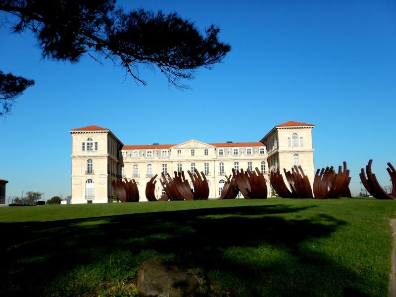compte-rendu transat Gênes-Fort de France. 23.11.2015 MSC Orchestra  Dscn0483