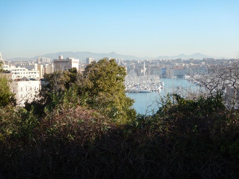 compte-rendu transat Gênes-Fort de France. 23.11.2015 MSC Orchestra  Dscn0486
