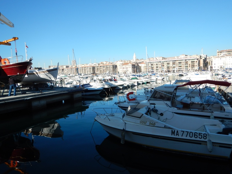 compte-rendu transat Gênes-Fort de France. 23.11.2015 MSC Orchestra  Dscn0497