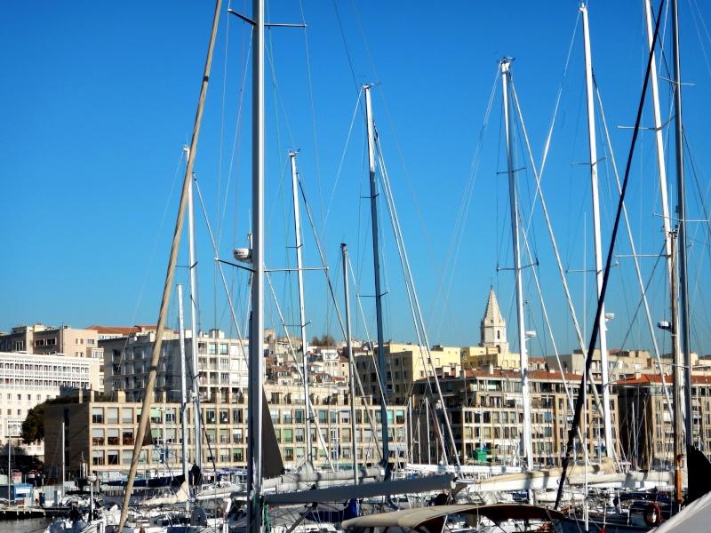 compte-rendu transat Gênes-Fort de France. 23.11.2015 MSC Orchestra  Dscn0498