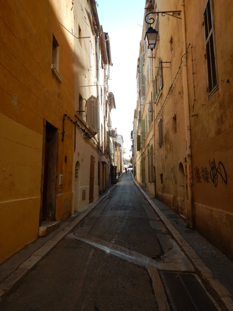 compte-rendu transat Gênes-Fort de France. 23.11.2015 MSC Orchestra  Dscn0499