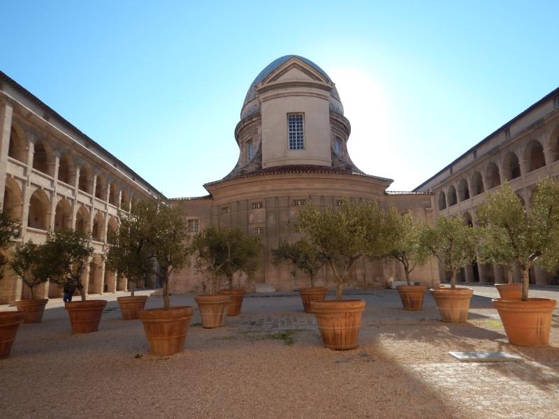 compte-rendu transat Gênes-Fort de France. 23.11.2015 MSC Orchestra  Dscn0542