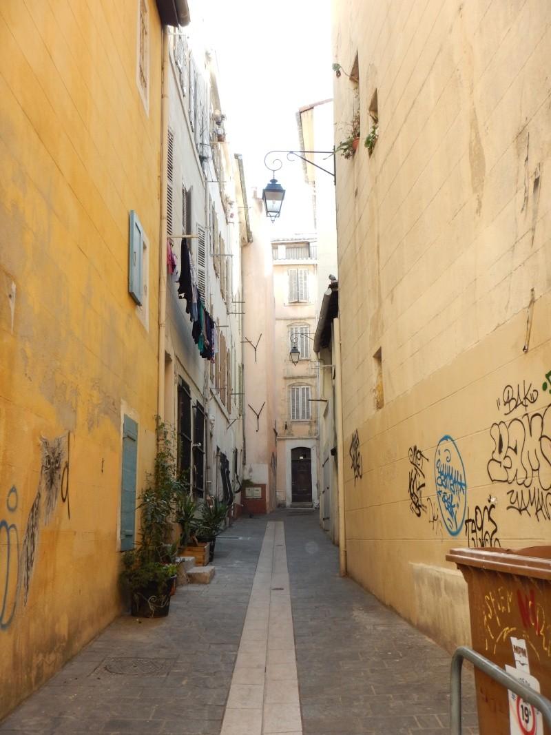 compte-rendu transat Gênes-Fort de France. 23.11.2015 MSC Orchestra  Dscn0544