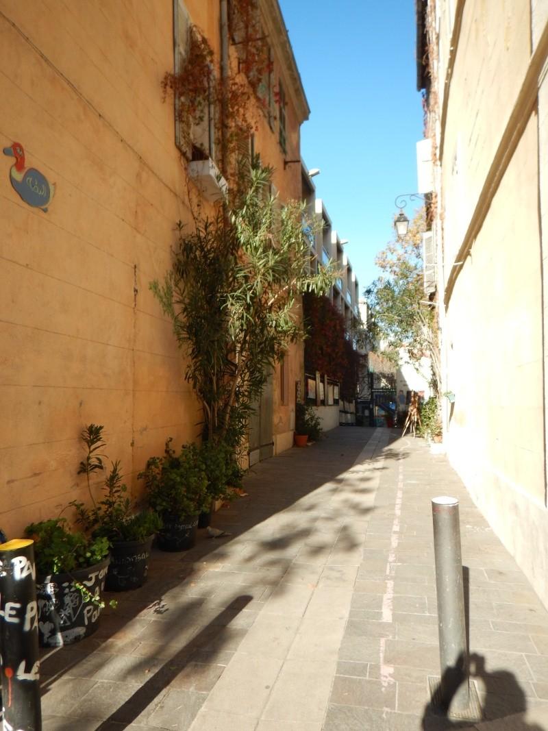 compte-rendu transat Gênes-Fort de France. 23.11.2015 MSC Orchestra  Dscn0547